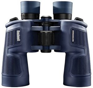budget binoculars for whale watching