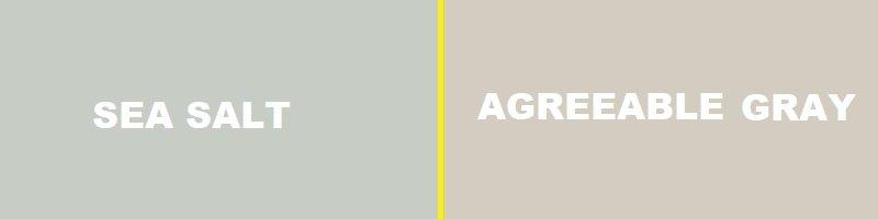 sea salt vs agreeable gray