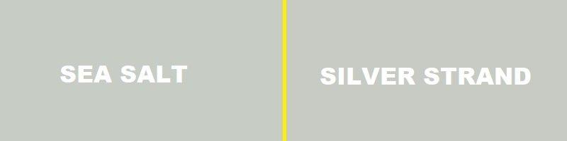 sea salt vs silver strand