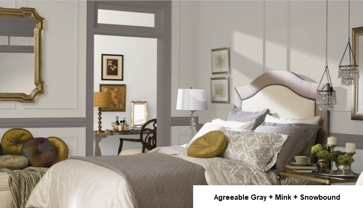 AGREEABLE GRAY AND mink and Snowbound in background room