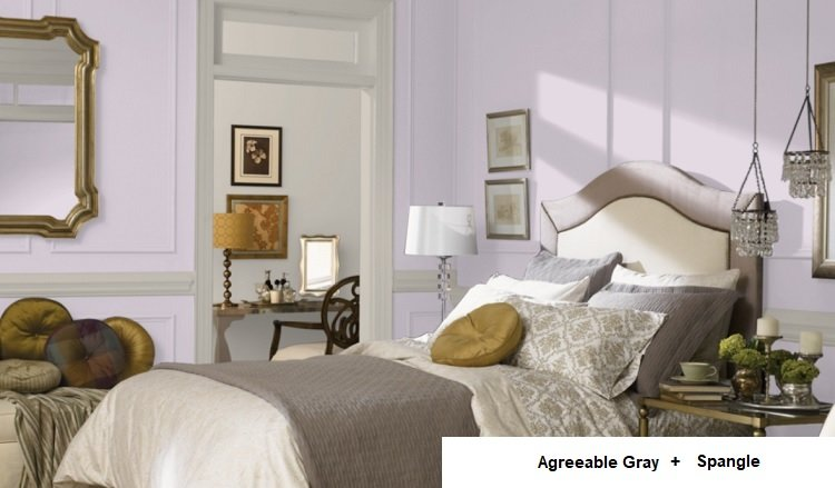 AGREEABLE GRAY AND spangle and agreeable gray in background room