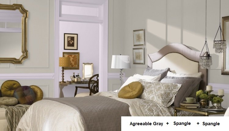 AGREEABLE GRAY AND spangle and spangle in background room