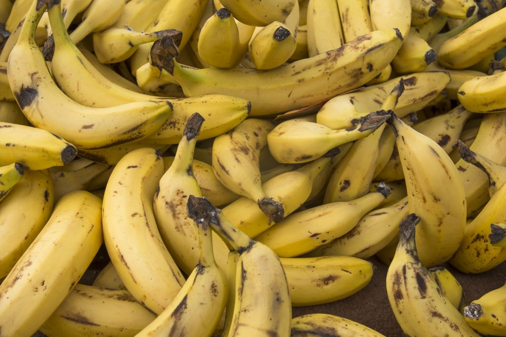 bananas grown