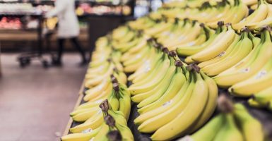 bananas made